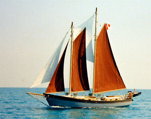 41' Colvin Doxy Sailboat / Schooner  ............ PRICE REDUCED!