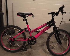 """20"""" girls mountain bike"""
