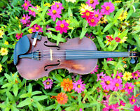 FIDDLE PLAYER FOR YOUR ENTERTAINMENT NEEDS