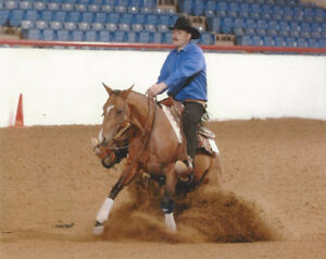 Horsemanship/Reining Clinic by Pernell Fleck