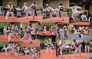 Learn Tae Kwon Do at World Ki Moo Gwan Martial Arts Windsor Region Ontario image 2