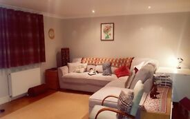 Large Single Room, open plan living, private parking, light and airy, West Sutton