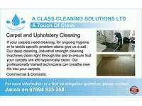 Professional carpet and upholstery cleaners
