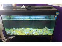 218 Litre Fish Tank Full Set Up