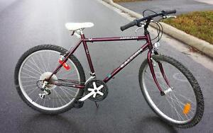Mountain Bike For Sale, Raleigh - Made in Canada, 20-Inch Frame, 18-Speed, 26-inch tires,