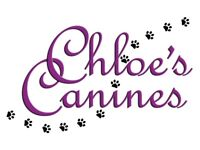 CHLOE'S CANINES DOG WALKING AND PET SERVICES