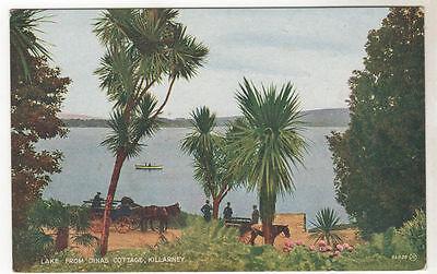 Lake - Killarney Photo Postcard c1920 / Ireland