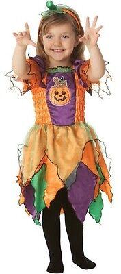 Toddler & Older Girls Pumpkin Witch Halloween Fancy Dress Costume - Older Girls Halloween Costumes