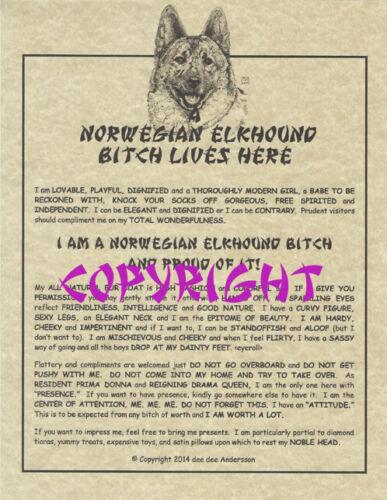 A Norwegian Elkhound Bit^h Lives Here