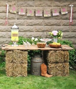 Golden straw bales for your wedding decor / special events! Kitchener / Waterloo Kitchener Area image 10