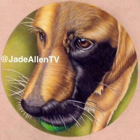 A4 Custom Pet Drawing Dogs Portrait Pencil Hand Drawn Original From Your Picture