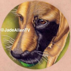 A5 Custom Pet Drawing Dogs Portrait Pencil Hand Drawn Original From Your Picture