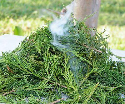 Native American Smudge Loose Bundle Cedar 2oz Bag Herb Incense Ceremonial