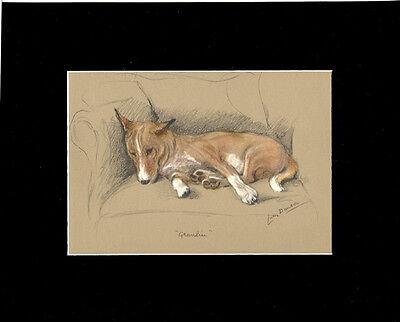 Basenji Dog Rexaxing 1946 Print by Lucy Dawson 8X10 inch Mat