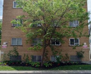 Renovated One Bedroom Apt – Close to Downtown, RMC and Queens