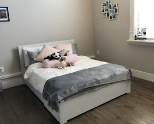 Full/Double size bed frame and mattress