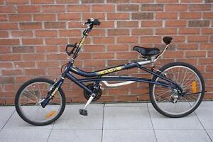 Vélo de type quetzal CCM EvoX140 (A033896)