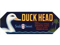 ORIGINAL DUCK HEAD ORANGE CRATE LABEL FLORIDA STRIP 1960S UMATILLA WADING BIRD