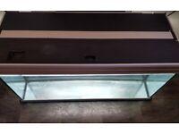 AQUARIUM/FISH TANK LARGE 180L FULL TROPICAL SETUP+NEW LIGHTS+FLUVAL FILTER+NEW HEATER