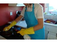 DOMESTIC & COMMERCIAL CLEANING (RELIABLE & AFFORDABLE)