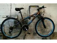 Mans mountain bike