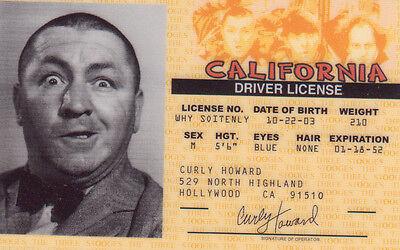 Howard Halloween-kostüm (Halloween Costume Gear Curly Howard ID Card Drivers License - The Three Stooges)
