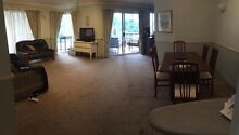 Room available in spacious St Lucia apartment St Lucia Brisbane South West Preview