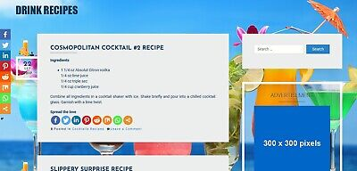 Established Drink Recipe Wordpress Website With 7000 Recipes Integrated Adsense