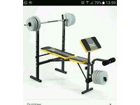 Everlast weight bench nd weights