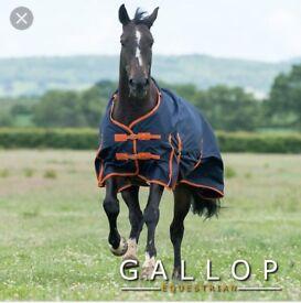 Horse pony outdoor rug