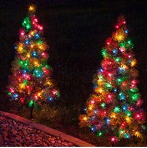 Decorative Lights. 2 sets of 50 lights.