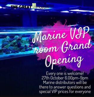 The Great Amazon marine VIP night