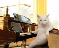 URGENT: Seeking substitute piano teacher for Oct 24, Nov 6-7