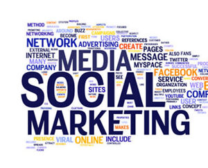 Social Media and Sales Specialist for LCN Canada