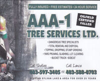 AAA-1 Tree Services and Custom Fencing