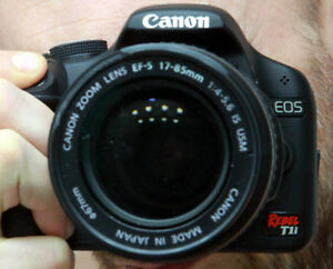 Canon Gear - T1i body and pro lenses