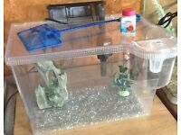 pretty 15 litre fish tank with filter and decor £15