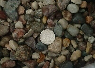25 lbs of Natural River and Mountain Rock For Landscaping Garden 3/4 - 1 inch