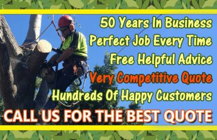 Quick Tree Lopping, Removal, Stump Grinding, More
