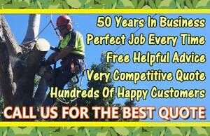 Tree Lopping, Removal, Stump Grinding @ Competitive Rates Blacktown Blacktown Area Preview