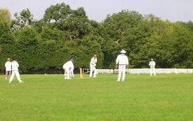 Are you looking for a Cricket Team? Come and join us for fun social, or competitive league cricket