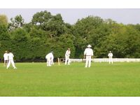 Players wanted - come and join us for competitive league and fun social Cricket in North West London