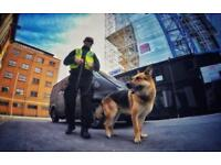 K9 Security Protection Services / dog handler