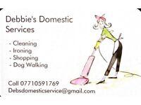 Debbie's Domestic Services