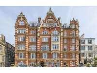 1 bedroom flat in Allen Street, Kensington