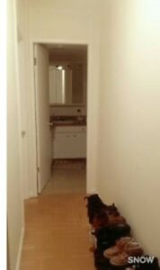 Private room available in 1 Bedroom Apartment