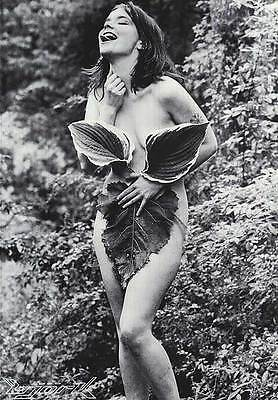 "MUSIC POSTER~Bjork Nude ""Nymph in Forest"" 22x32 1990's Sugarcubes NOS Vintage BW"