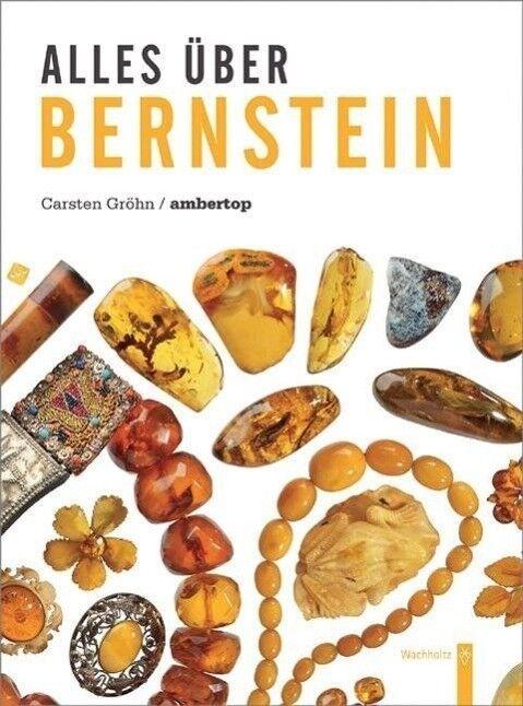 Alles über Bernstein - Carsten Gröhn - 9783529054389 DHL-Versand PORTOFREI