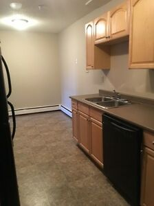 Large Two Bedroom plus den Apartment Downtown