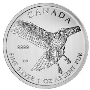 Maple Leaf 2015 - 5$ (1 oz argent pur) - Buse à queue rousse